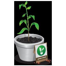 green, plant, seedling, tree icon