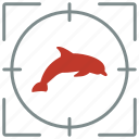 animal, aquarium, dolphin, hunting, shoot, zoo icon