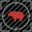 animal, bear, hunting, predator, shoot, zoo icon