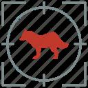 animal, hunting, predator, shoot, wolf, zoo icon