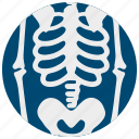 costume, decoration, halloween, scary, skeleton icon