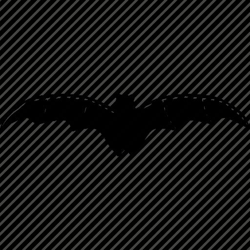bat, halloween, spooky icon