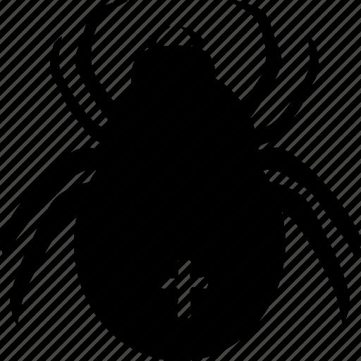halloween, spider, spooky icon