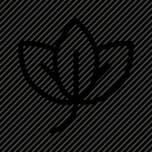 branch, ecologic, leaf, nature, plant icon