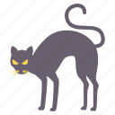 animal, cat, halloween, horror, scary, wild icon