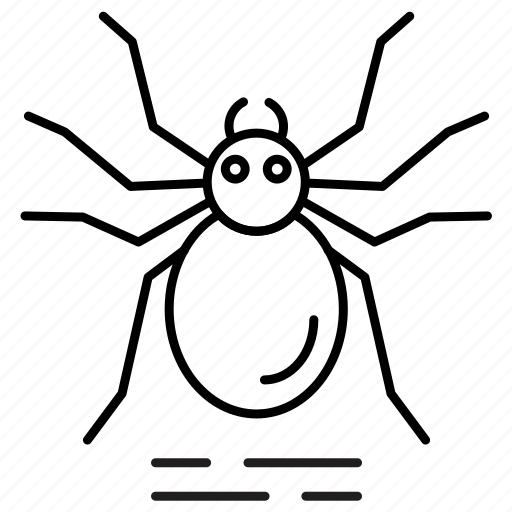 bug, halloween, insects, spider icon
