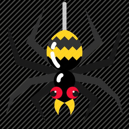 Bug, scary, spider, tarantula, web icon - Download on Iconfinder