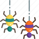 bug, halloween, horror, insect, scary, spider, web icon