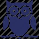 animal, bird, halloween owl, nocturnal animal, owl icon