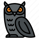 animal, hallween, owl, scary