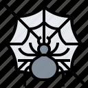 cobweb, creepy, insect, spider, spooky