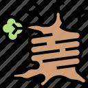 tree, trunk, spooky, creepy, haunted
