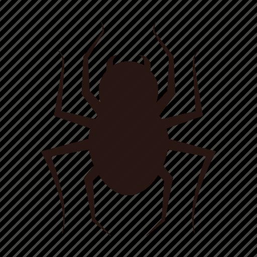 accessories, halloween, spider icon