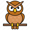 animal, avatar, bird, halloween, owl, spooky
