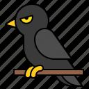 avatar, bird, crow, halloween, spooky icon