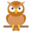 animal, avatar, bird, halloween, owl, spooky