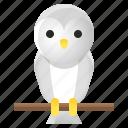 avatar, halloween, owl, spooky icon