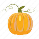cartoon, colorful, food, fresh, healthy, pumpkin, vegetarian icon