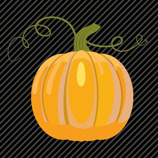 cartoon, colorful, food, fresh, healthy, pumpkin, vegetarian icon