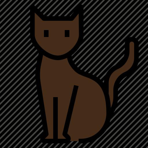cat, halloween, kitten, scary icon
