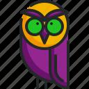 owl, bird, halloween, hunter, animal
