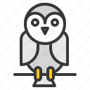 animal, barn owl, bird, halloween, owl, scary icon