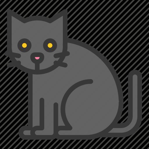 animal, black cat, cat, halloween, horror, mammal, scary icon