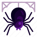 halloween, insect, scary, spider, spiderweb, spooky icon