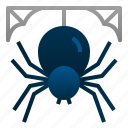 halloween, insect, scary, spider, spiderweb, spooky