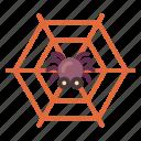 cobweb, creepy, halloween, spider web, spooky, tangled icon