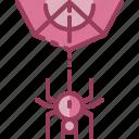 cobweb, halloween, monotone, spider icon