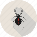 halloween, holiday, horror, spider, spooky icon