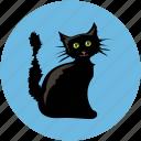 black cat, black evil cat, dreadful, evil cat, fearful, horrible, scary