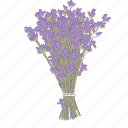 floral, flower, lavender, plant, wellness icon