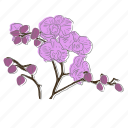 floral, flower, orchid, plant, wellness icon