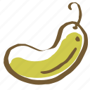cook, cooking, cucumber, dudi, food, vegetable, vegetables icon