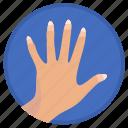 fingers, gesture, lady, manicure, woman