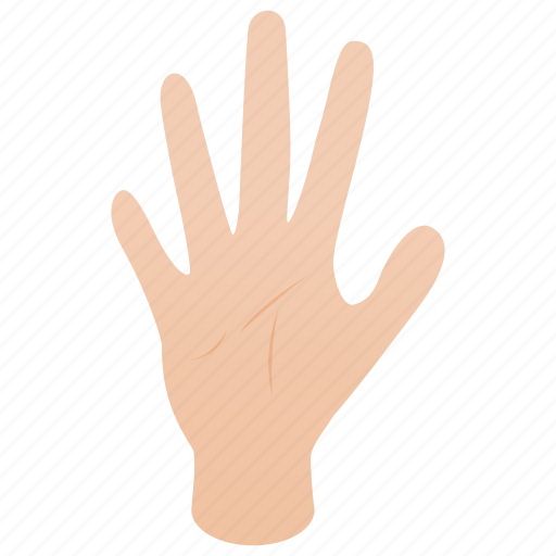 Finger, five, hand, human, isometric, palm, person icon - Download on Iconfinder
