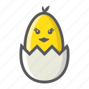 animal, bird, chick, easter, egg, hatched, holiday icon