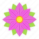 astra, easter, floral, flower, nature, plant, spring icon