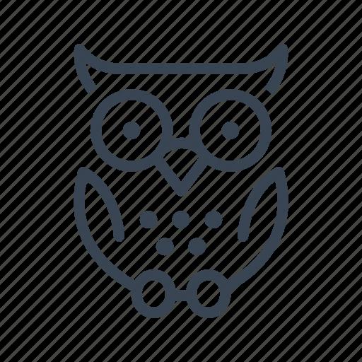 animal, halloween, owl icon