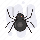 halloween, horror, insect, spider icon