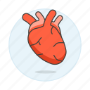 1, cardiology, circulatory, condition, health, heart, medical, specialties, system icon