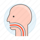 1, ent, health, manifestation, medical, orl, otolaryngologic, sore, symptom, throat icon