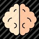 organmind, memory, brain, neurosurgery