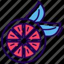 citrus fruit, food, fruit, lemon slice, orange slice icon