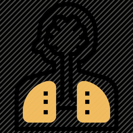 Body, health, human, internal, organ icon - Download on Iconfinder