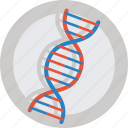 dna, gene, health, molecule, research, science icon