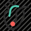 disease, hf, heart, ahf, health, failure, chf icon