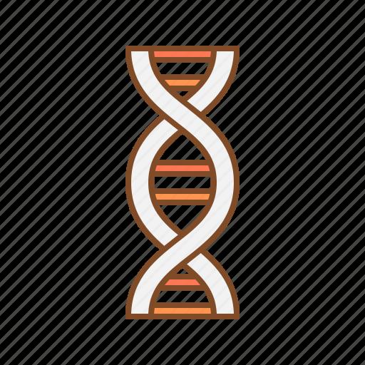 dna, genes, genetical, genetics, rna icon